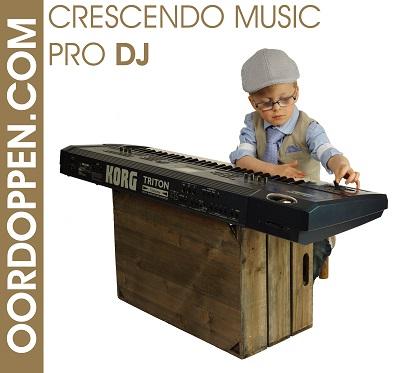 Crescendo Music PRO DJ oordopjes voor dancefeest oordoppen danceparty concert evenement deejee
