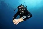 Beste Oordopjes voor Duiken Oordoppen Watersport Gehoorbescherming Snorkelen Pijnlijke Oren Pluggerz Swim Alpine SwimSafe Proplugs Nonoise Noizezz Crescendo